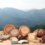 La gamme de fromages de l'AOP Ossau-Iraty