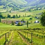 paysages de la Route du fromage (@Syndicat AOP Ossau-Iraty)