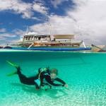 Les meilleurs clubs de plongee sont sur Tribloo.com