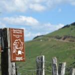 Une étape de la Route du fromage Ossau-Iraty - @OssauIraty